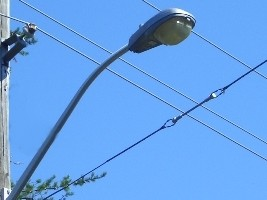 Installation of 300 streetlights in Cité Soleil
