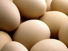Haiti - Agriculture : Eggs, poultry, livestock, production loss