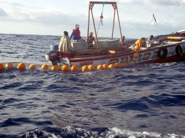 Haiti - Agriculture : Fishing in Haiti, review and prospects