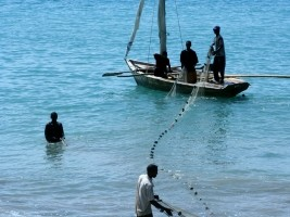 Agriculture : $15M from the IDB for traditional fishing