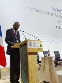 Haiti - COP21 : «The fruits have finally found the promise of flowers» dixit Dominique Pierre