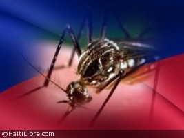 Haiti - FLASH : 5 cases officially confirmed of Zika fever in Haiti