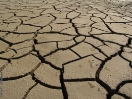 Haiti - Agriculture : The country hit by the worst drought in 35 years !