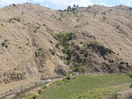 Haiti - Environment : Action Project Against Desertification