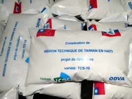 Haiti - Agriculture : Taiwan, strengthens the rice seeds production