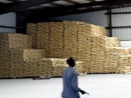 iciHaiti - Japan : Donation of more than 150,000 bags of fertilizer