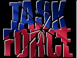 Haiti - FLASH : Creation of a Task Force to combat spoilers
