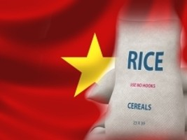Haiti - NOTICE : 18,000 metric tonnes of Vietnamese rice expected in the country
