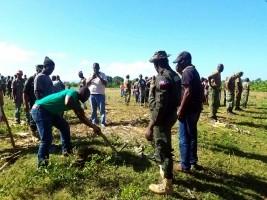 iciHaiti - Léogâne : Launch of a 3-days reforestation activity