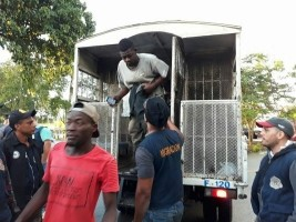 iciHaiti - FLASH : 137 illegal Haitians arrested, denounced by Dominicans