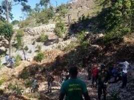 iciHaiti - Environment : 7,000 trees for Morne Hospital
