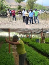iciHaïti - Environnement : Vers la construction du 7e Centre de propagation végétal
