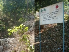 Haiti - Environment : Reforestation and treatment of the gully Nan Baryè