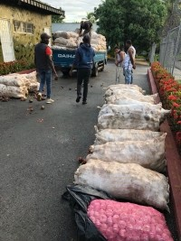 Haiti - DR : Important seizures of contraband products from Haiti