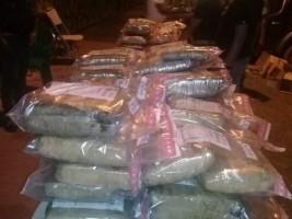 iciHaïti - RD : Saisi de 285 kg de marijuana et arrestation d'un haïtien