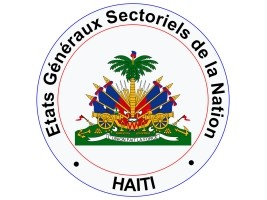 HereHaiti - Diaspora: Forum of General States Sectoral of the Nation