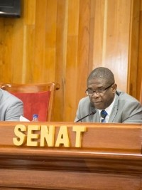 Haiti - Politic : The Senate Speaker does not believe possible elections this year