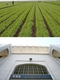 iciHaïti - Agriculture : Rôle de la BRH dans la financement de l'Agri-Tourisme
