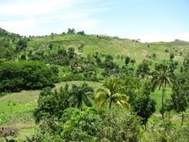 iciHaïti - Environnement : Haïti mal classé, 174 sur 180 pays