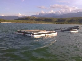 Haiti - Agriculture : Aquaculture next pillar of food production in the country