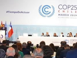 Haiti - Environment : Haiti present at the Madrid Conference (COP25)