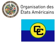 Haiti - Elections : The JEOM calls on the CEP to transparency