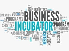 Haïti - Économie : 25 projets de création d'entreprises sélectionnés