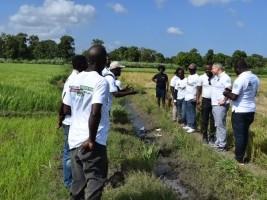 iciHaïti - Agriculture : José Luis Fernández de la FAO en tournée dans le Nord-Est