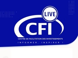 iciHaiti - Invitation : Online forum on investment in Haiti
