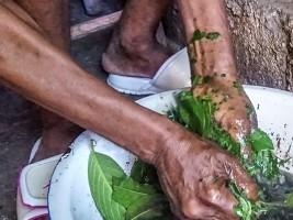 iciHaïti - Covid-19 : Soutien conditionnel du Ministère aux remèdes traditionnels
