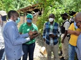iciHaiti - Marigot : Gabionnage of the Citronnier river