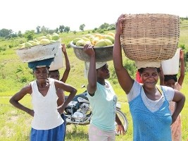iciHaïti - Politique : Hommage aux filles et aux femmes rurales