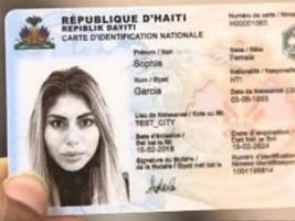 iciHaïti - Politique : Les membres de la diaspora peuvent obtenir une CIN à l'aéroport de Port-au-Prince