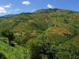 iciHaïti - France : 11 millions d'euros pour le Fonds Haïtien pour la Biodiversité