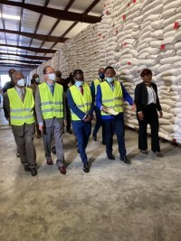 iciHaiti - Japan : Donation of 6,100 tons of rice