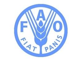 iciHaïti - Agriculture : 3ème forum des partenaires financiers de la FAO