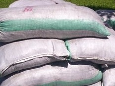 Haiti - Agriculture : The government sets the price of fertilizer