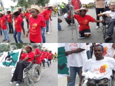 Haiti - Social : People with disabilities have made a real show in the Carnival of Flowers