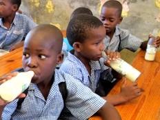 Haïti - Agriculture : 2 millions pour le développement de la production et la transformation du lait