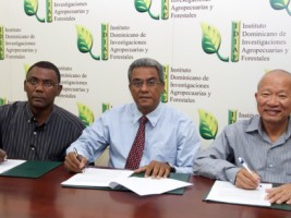 The IDIAF and Taiwanese cooperation support Haitian agriculture