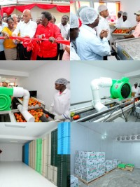 Haiti - Agriculture : Pilot Centre of Conditioning for fruits and vegetables of Kenscoff