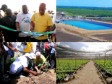 Haiti - Agriculture : $27M for the production of bananas for export