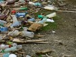 Haiti - Environment : Waste Management Project at Martissant Park
