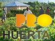 Haiti - Agriculture : True success of ProHuerta Program in Haiti