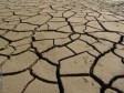 Haiti - Agriculture : Drought, emergency situation