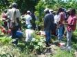 iciHaïti - Gros Morne : 25 agriculteurs équipés et formés au greffage