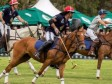 iciHaïti - Sport : L'équipe de Polo d'Haïti reste un concurrent sérieux