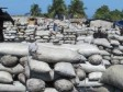 iciHaiti - FLASH DR : Haitians burn the Dominican forest, 18,000 bags of charcoal seized