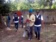 iciHaiti - DR : 163 Haitians deported during migratory control