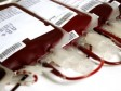 iciHaiti - Health : Figures on blood collection in the country, more than alarming